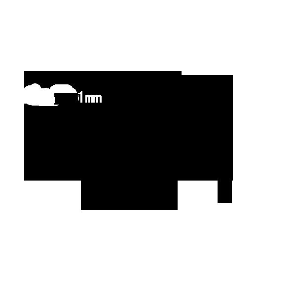 EHR25