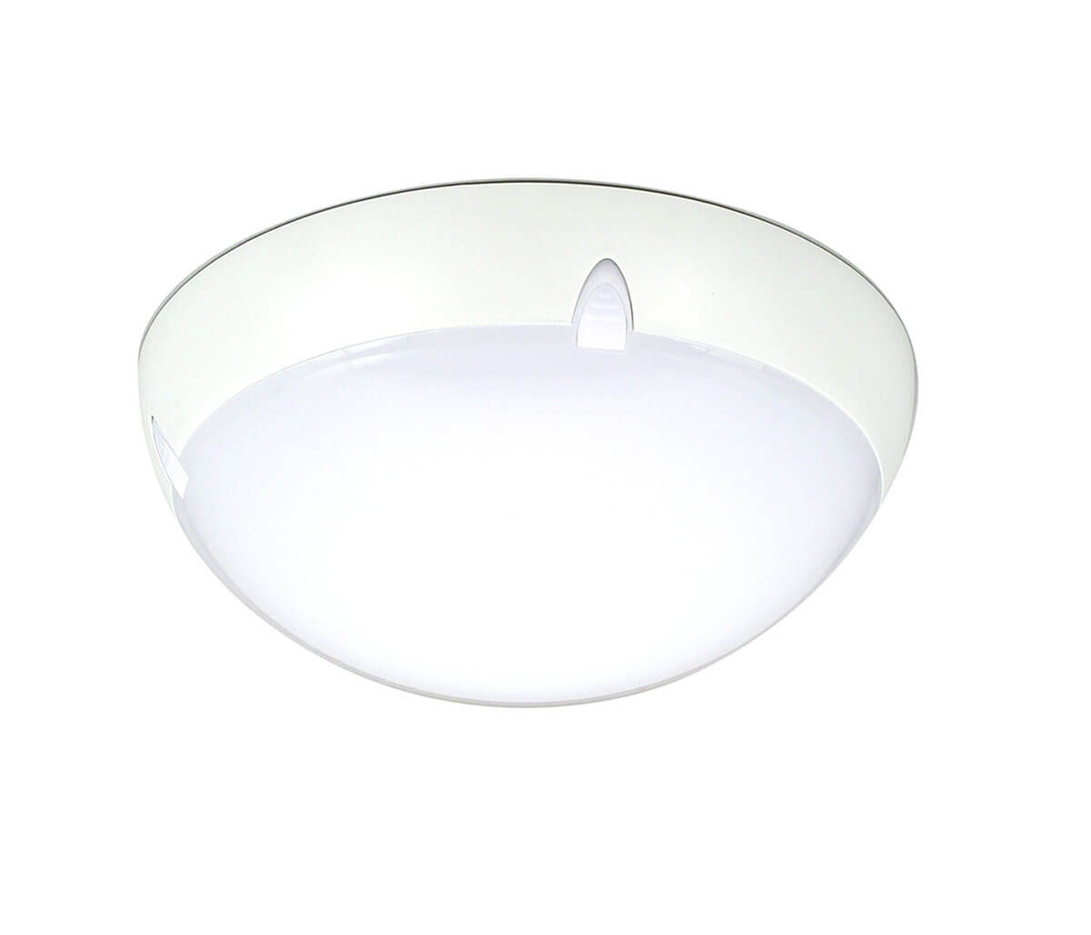 ip65 decorative led ceiling lights